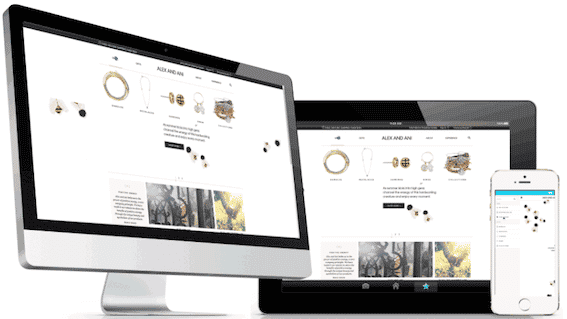 Alex and Ani Increased Email Revenue By 36% With The Right Cart Recovery Strategy