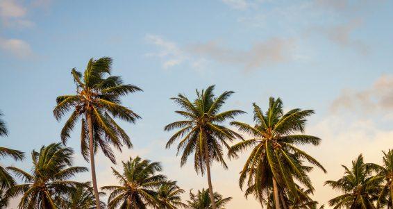 sky-beach-vacation-summer