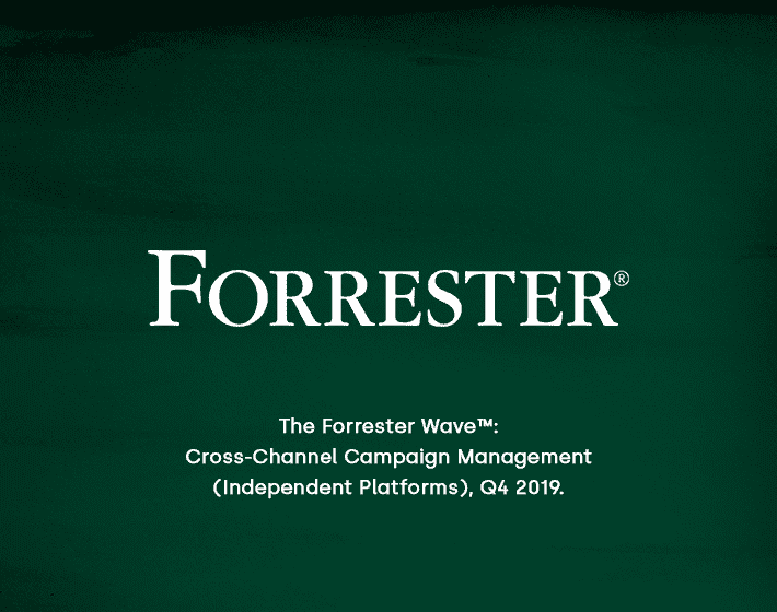 Forrester Wave for Cross Channel Campaign Management image